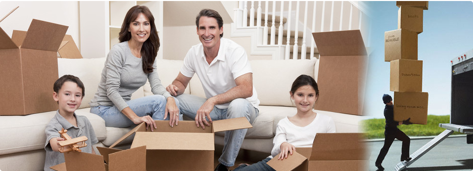 Packer and Mover Goa