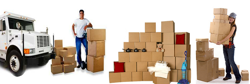 https://www.apmindia.com/branch.aspx?packers-and-movers-in-cuttack